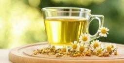 chamomile_tea_b